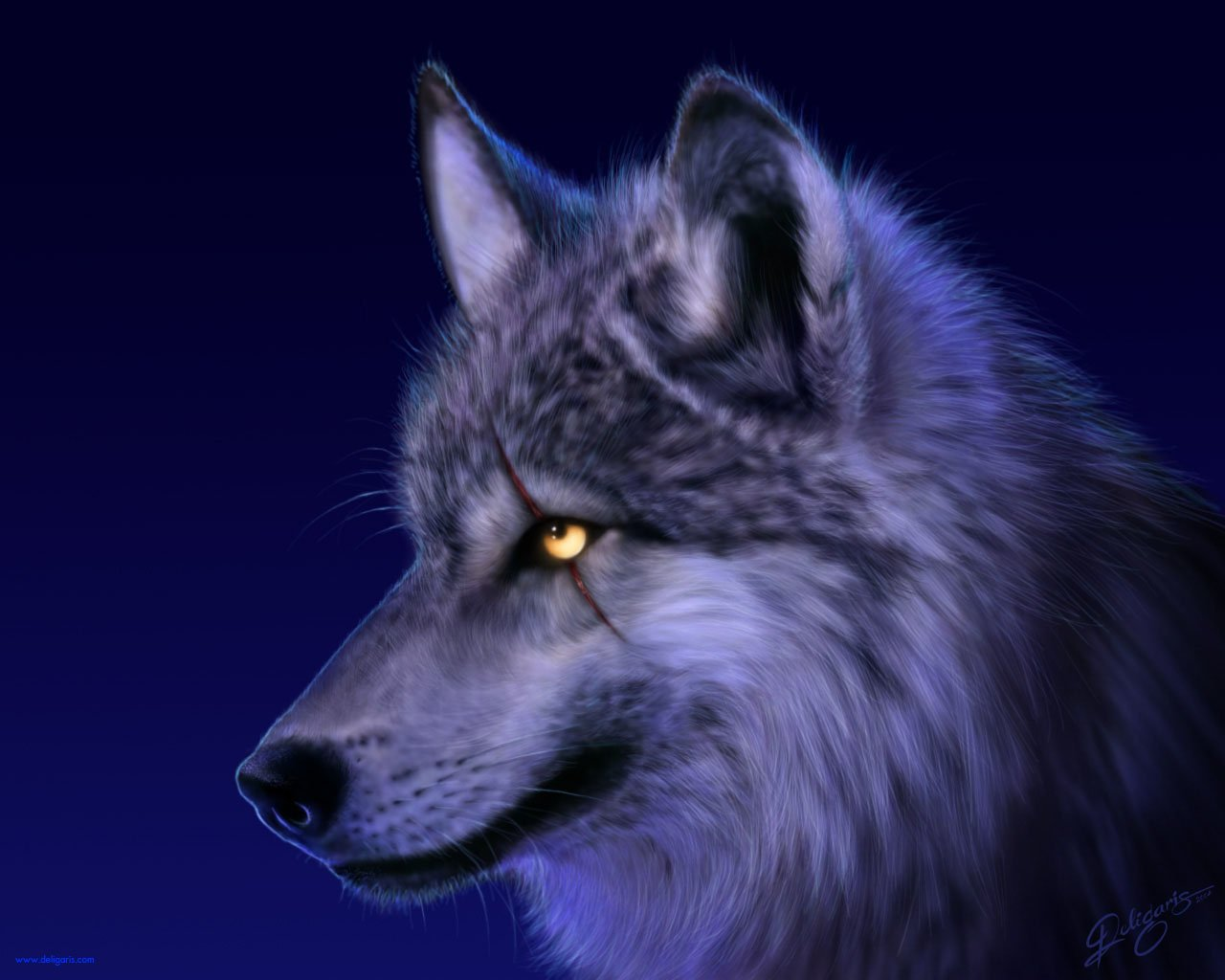 41617 Animal HD Wallpapers | Backgrounds - Wallpaper Abyss