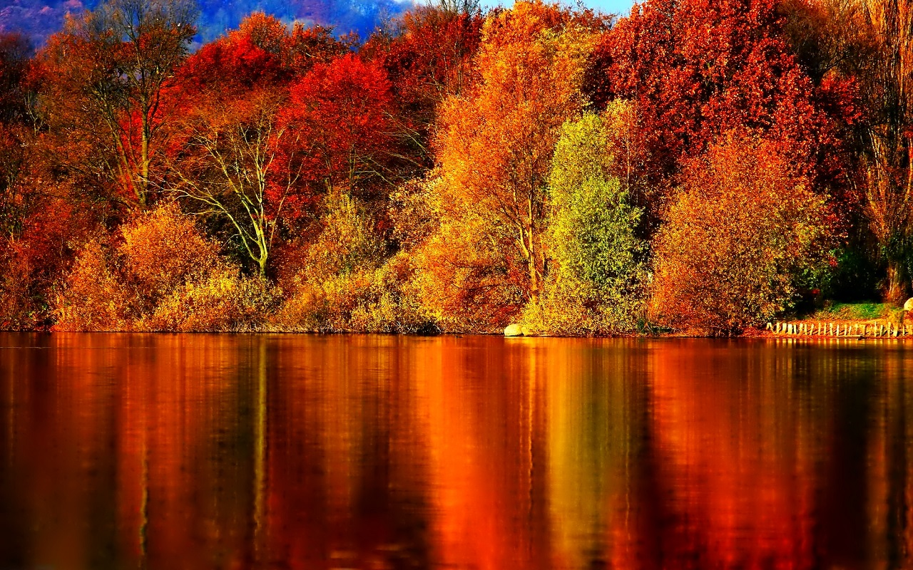 Backgrounds Autumn Group (81+)