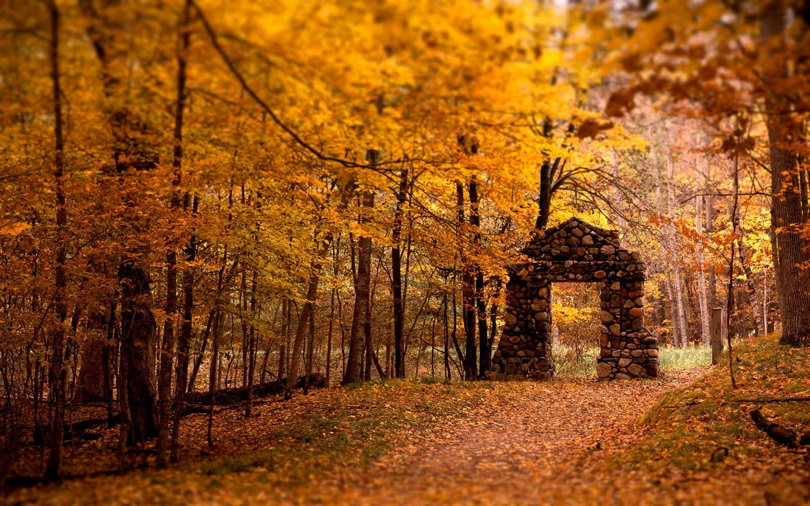 Collection of Fall Backgrounds Hd on HDWallpapers