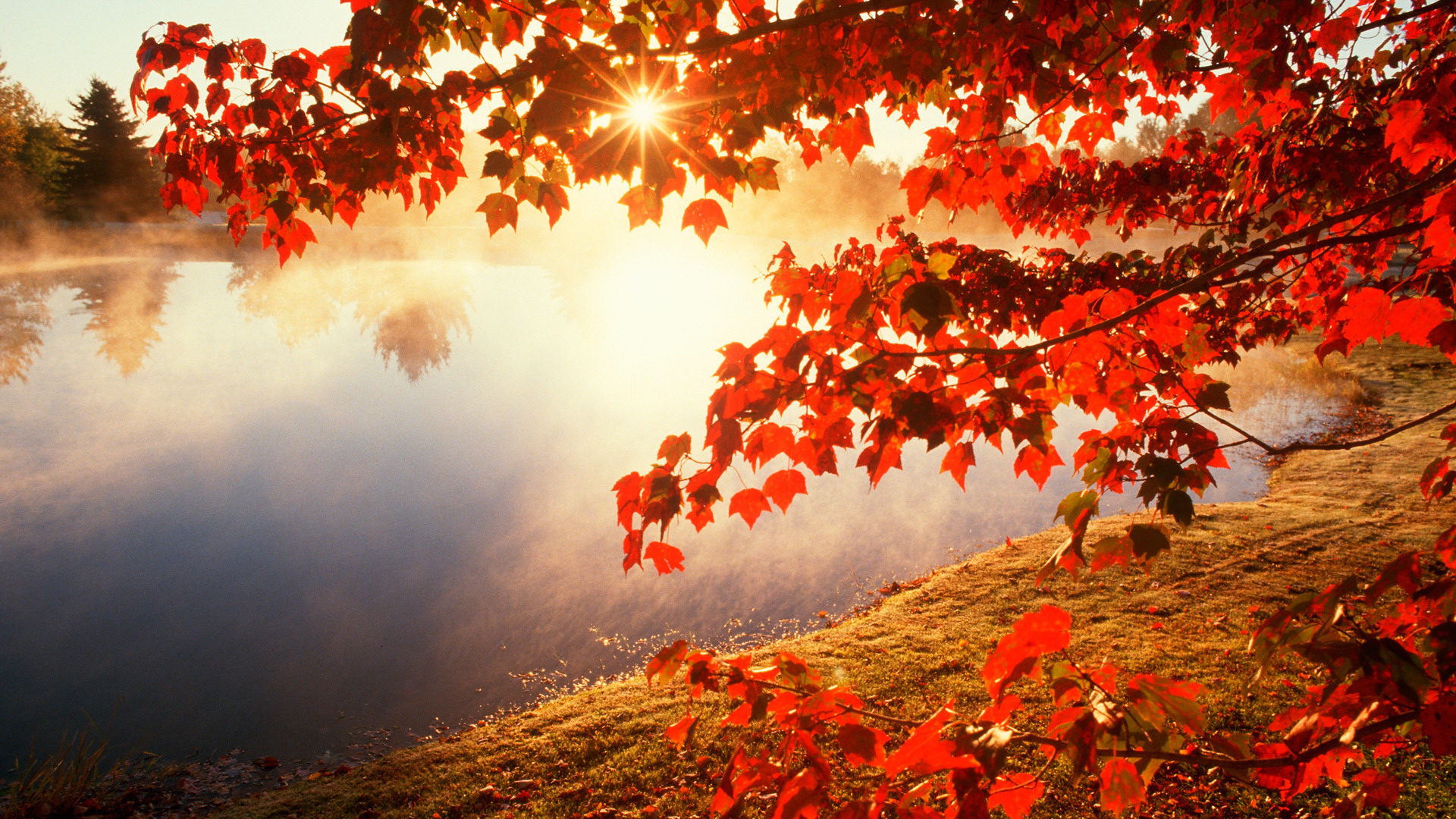 fall desktop wallpaper widescreen