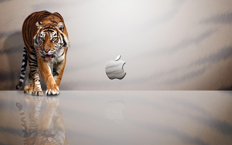 Free Desktop Wallpapers For Mac Group (75+)