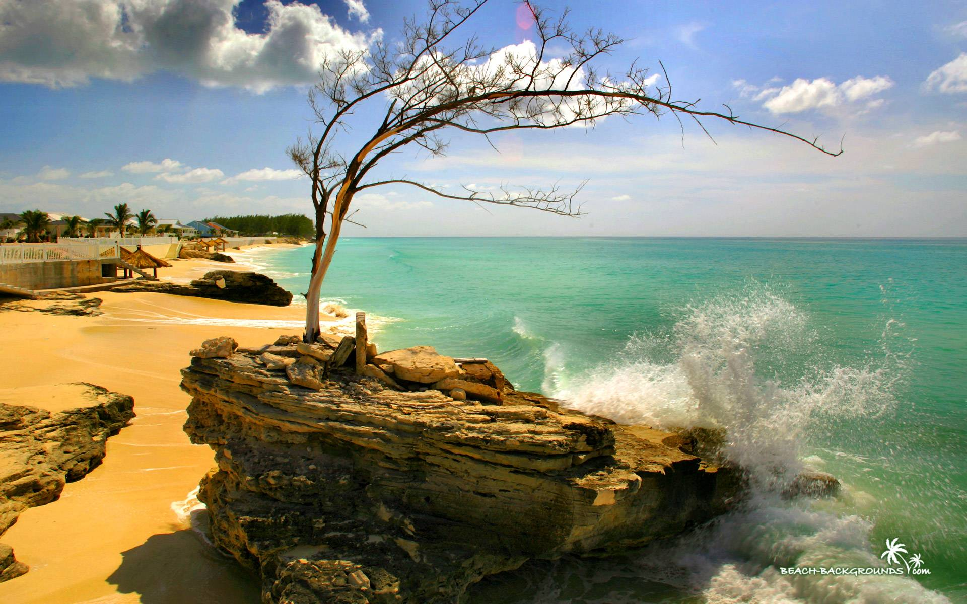 Download Beautiful Background Beach Bimini Stone Wallpaper   Full