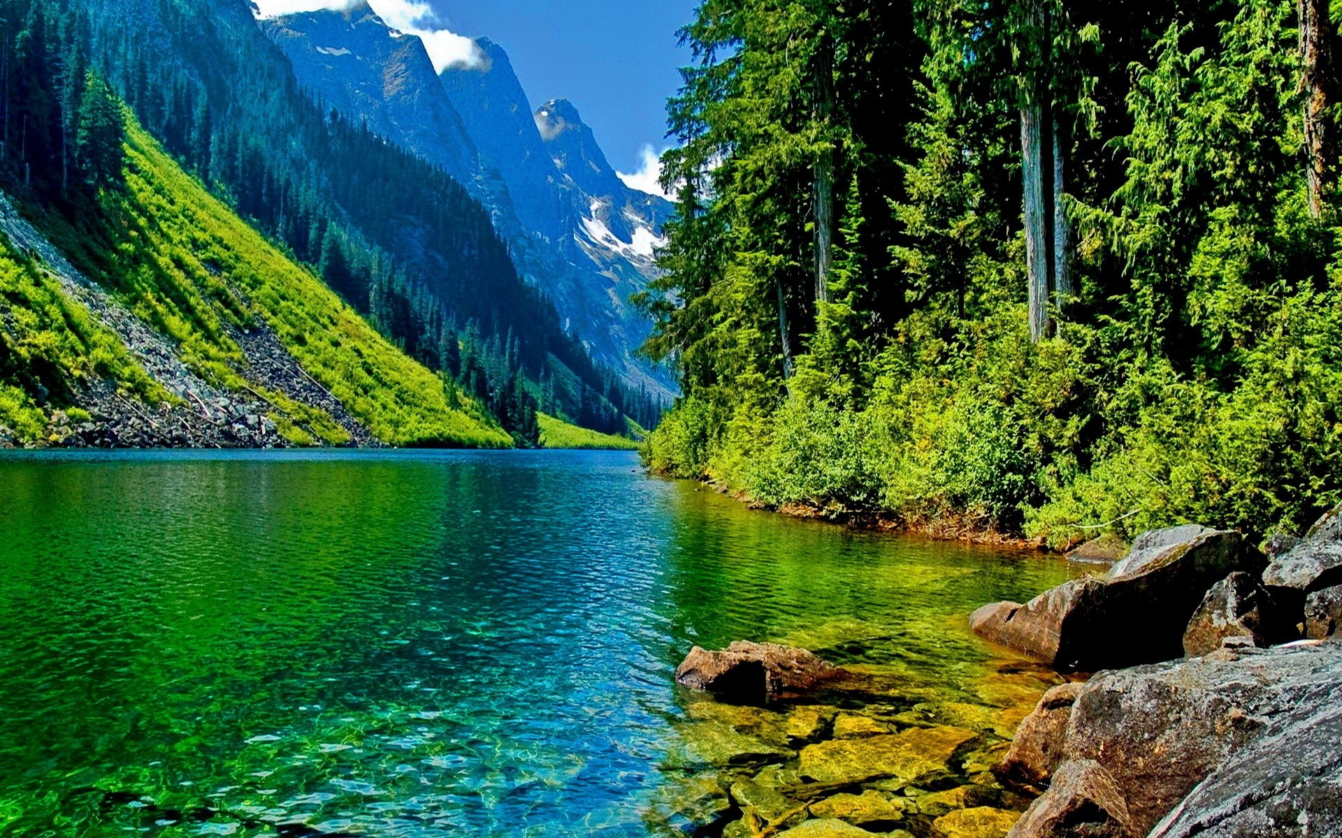 Free Beautiful Desktop Wallpaper HD - WallpaperSafari