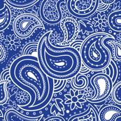 bandana fabric, wallpaper & gift wrap - Spoonflower