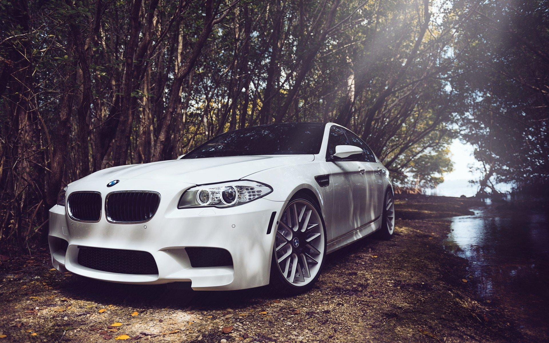 29 BMW M5 HD Wallpapers | Backgrounds - Wallpaper Abyss