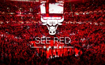 46 Chicago Bulls HD Wallpapers | Backgrounds - Wallpaper Abyss