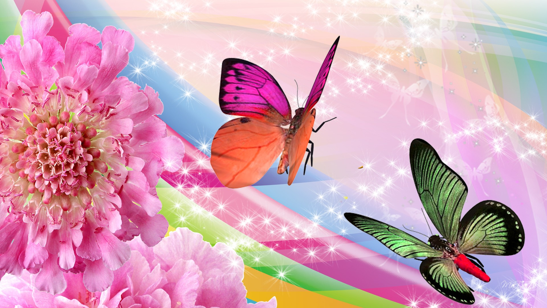 images of flowers and butterflies