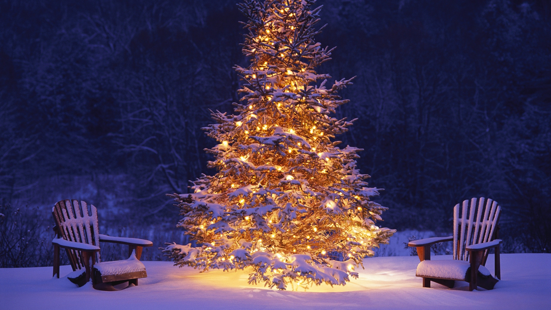 Xmas Tree HD Wallpaper Group (0+)