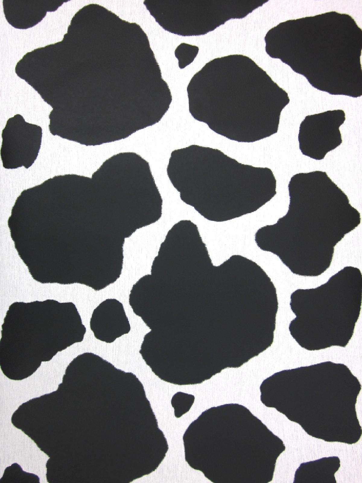 Cow Print Wallpapers Group (32+)