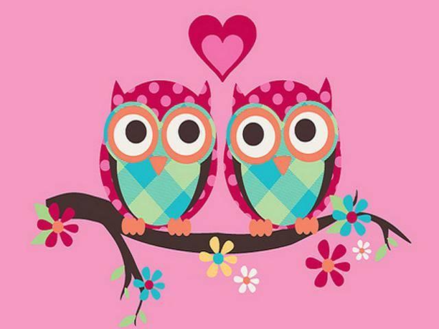 1000+ ideas about Cute Owls Wallpaper on Pinterest   Owl wallpaper