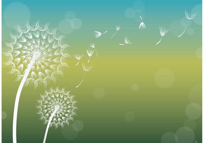 Dandelion Vector Background - Download Free Vector Art, Stock