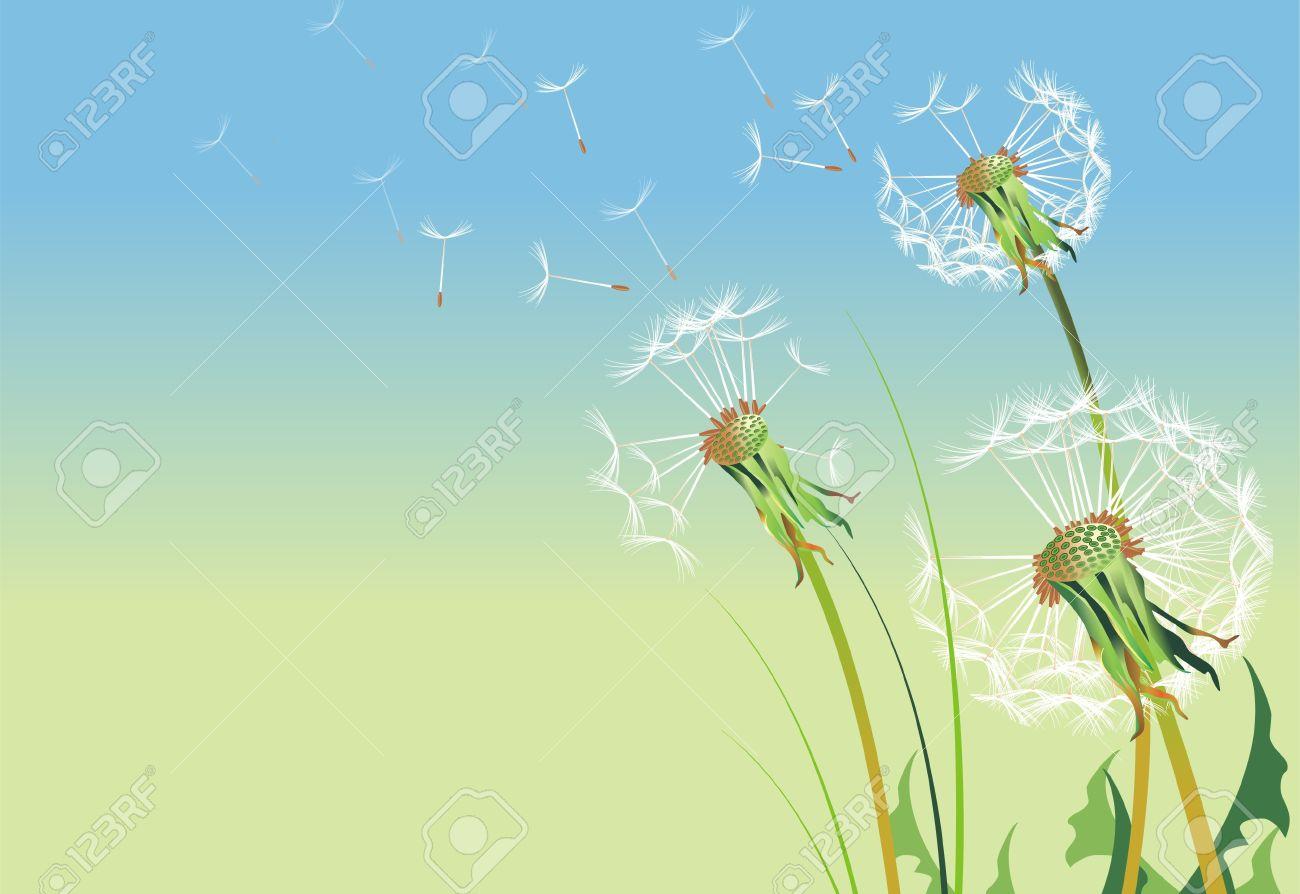 Dandelions Illustration  SImple Cool Dandelion Background - Copy