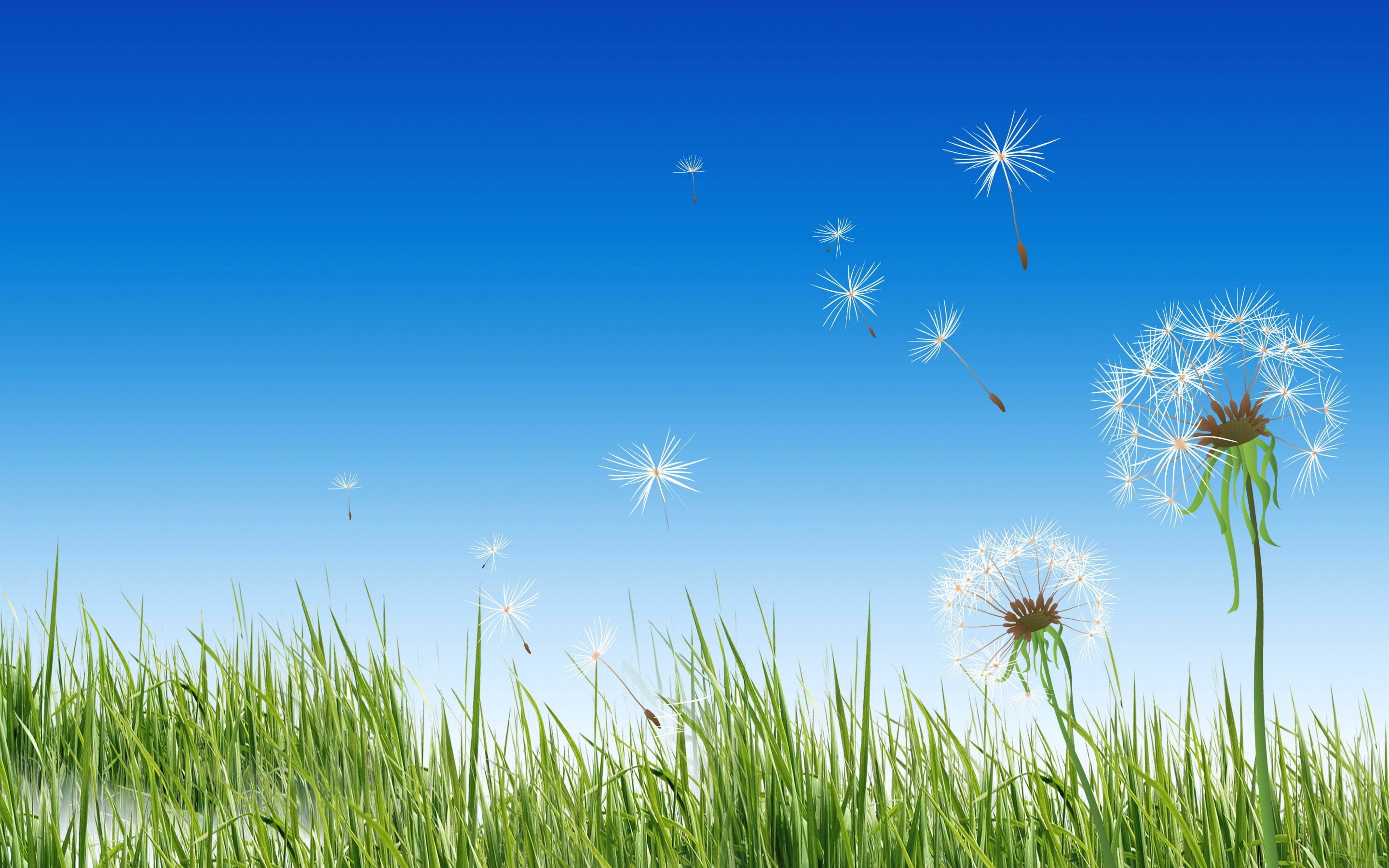 221 Dandelion HD Wallpapers | Backgrounds - Wallpaper Abyss - Page 3