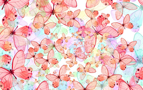 Butterfly Wallpaper Free Desktop Wallpapers Pc Backgrounds | pc