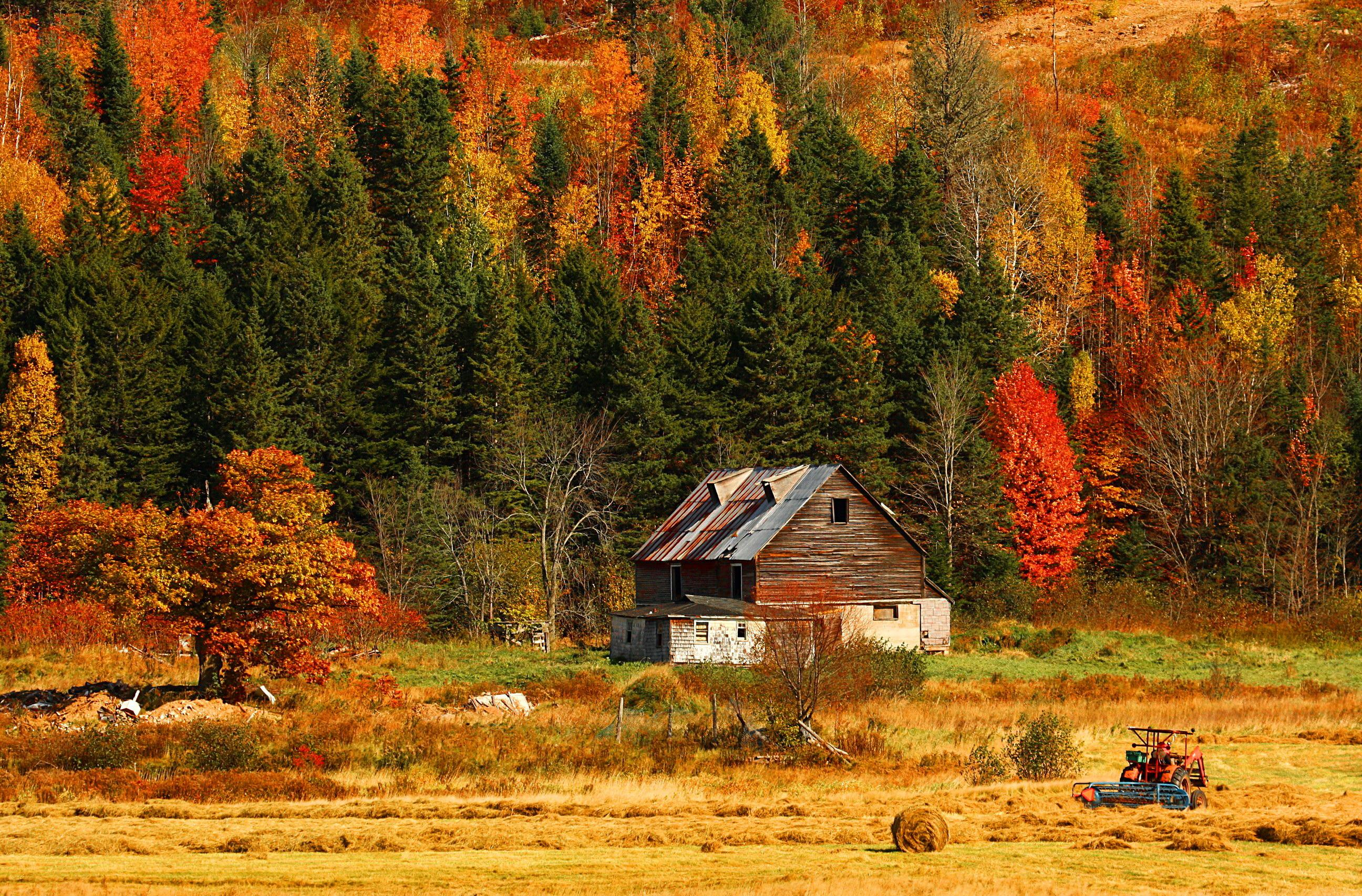 Autumn Mountain Wallpapers Mobile - Scerbos com