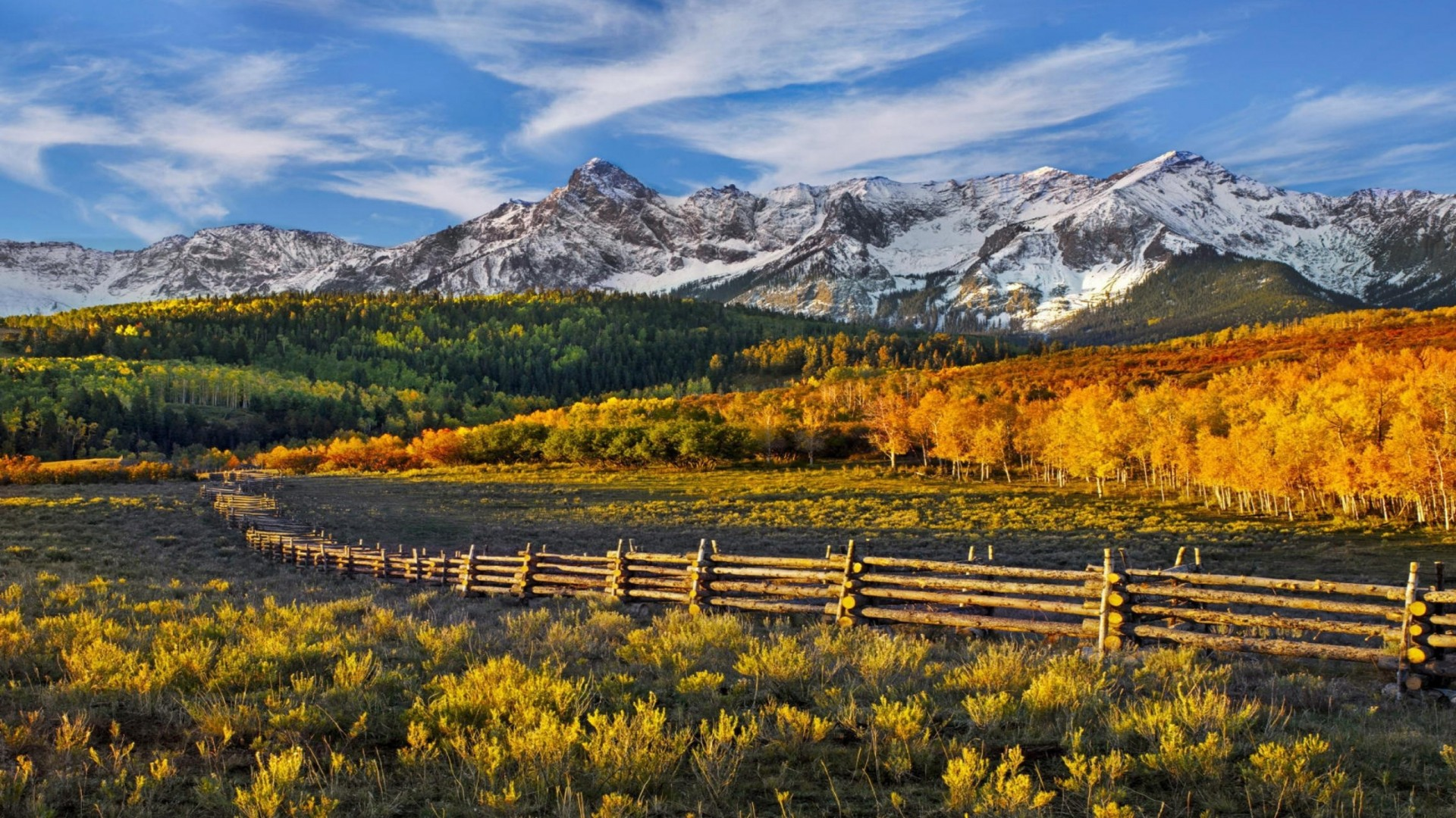 Beautiful, Hd Wallpaper Fall Mountains With Snow Forest With