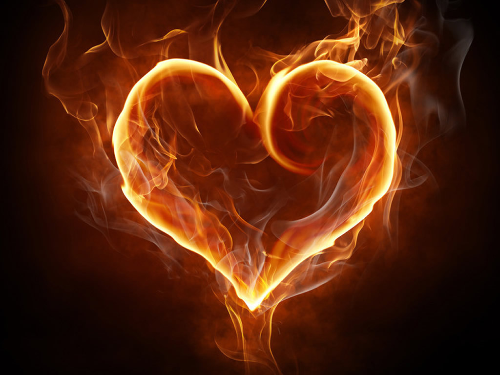 Collection of Fire Heart Wallpaper on HDWallpapers