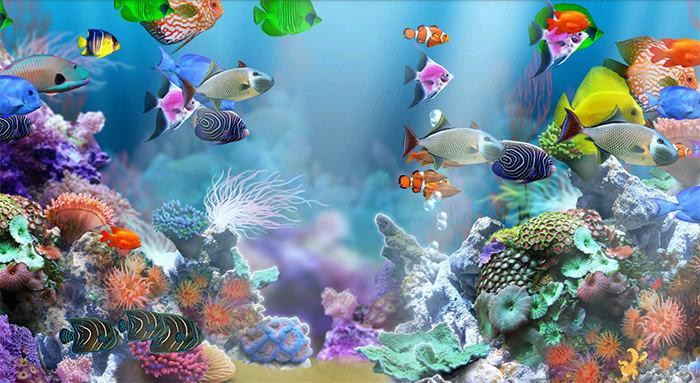 50+ Best Aquarium Backgrounds to Download & Print | Free & Premium