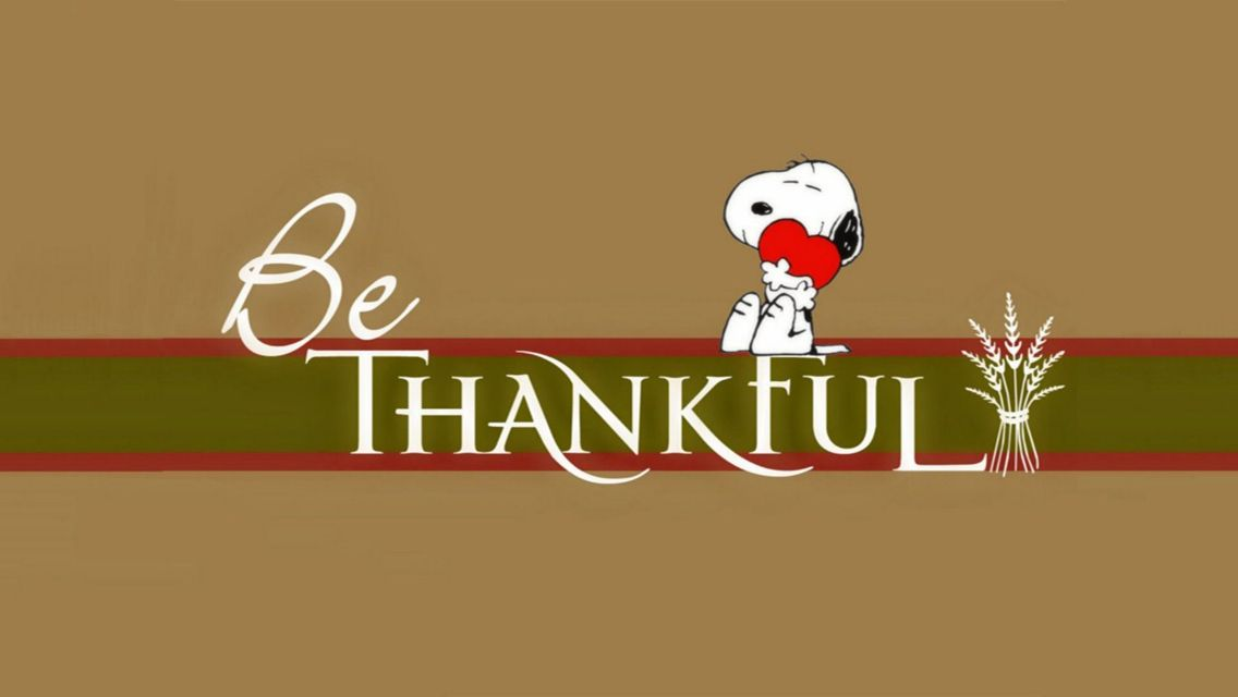 Free Funny Thanksgiving Wallpapers - Wallpaper Cave