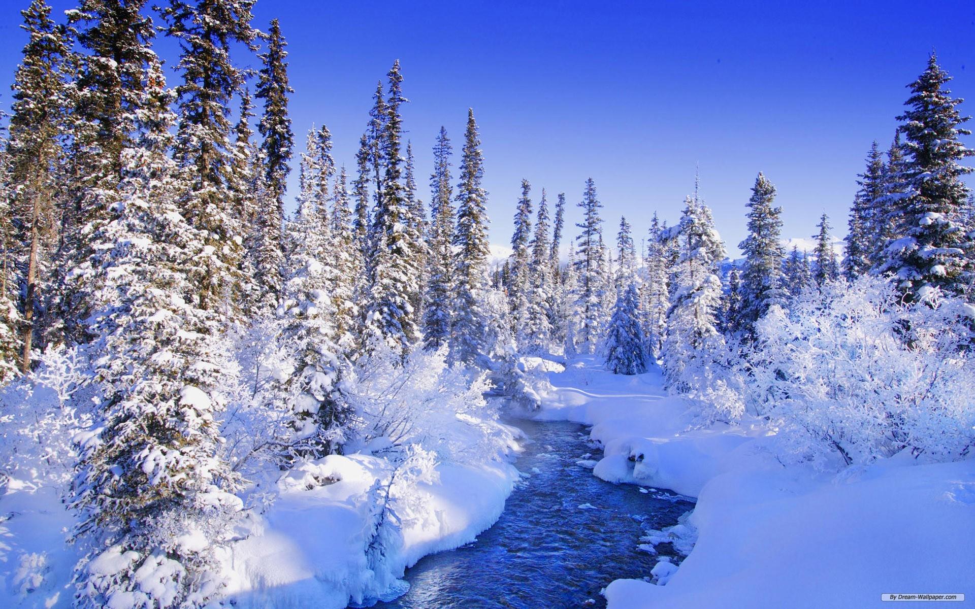 Free winter wallpaper | PixelsTalk Net