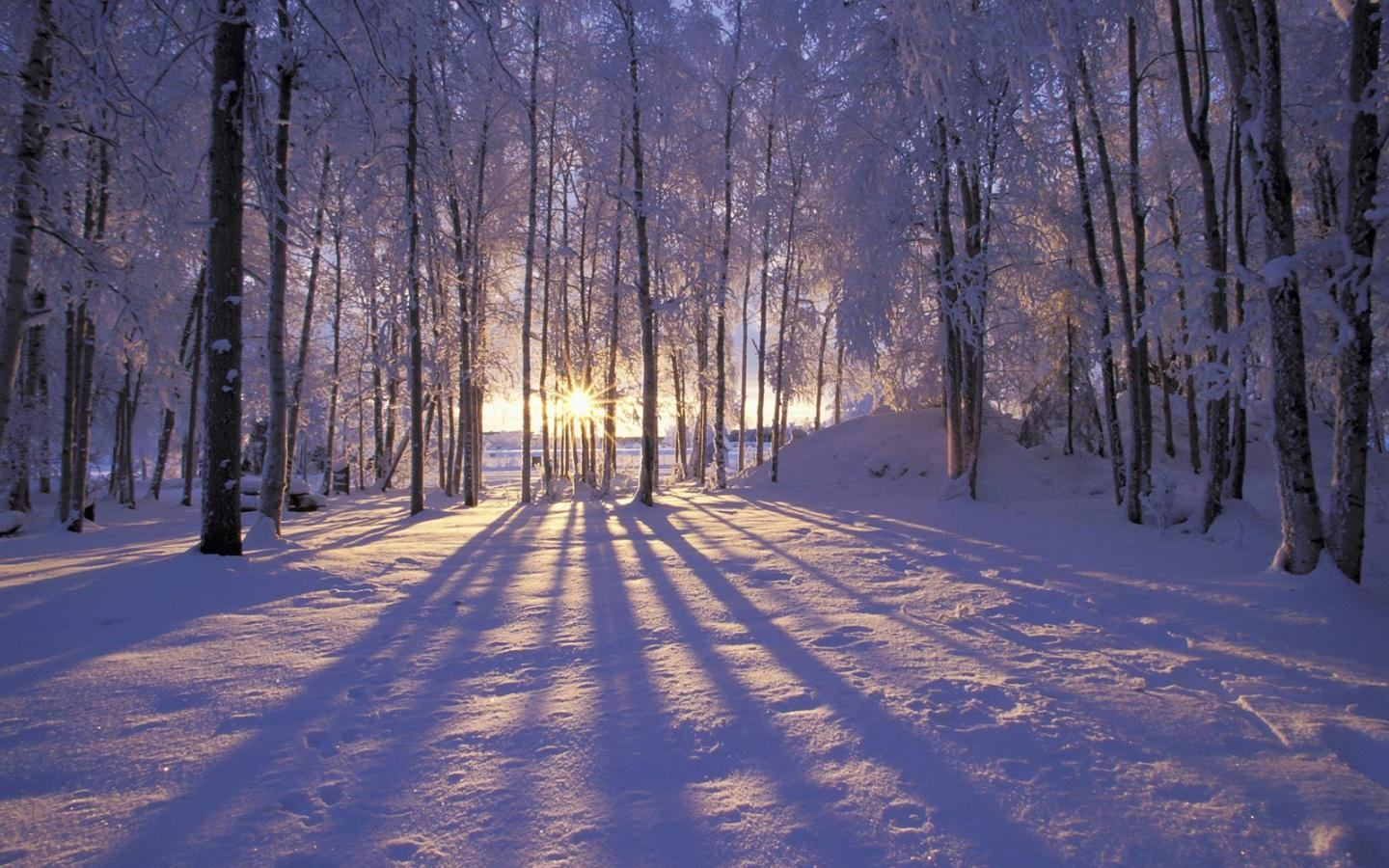 Free Winter Wallpapers Download Group (90+)