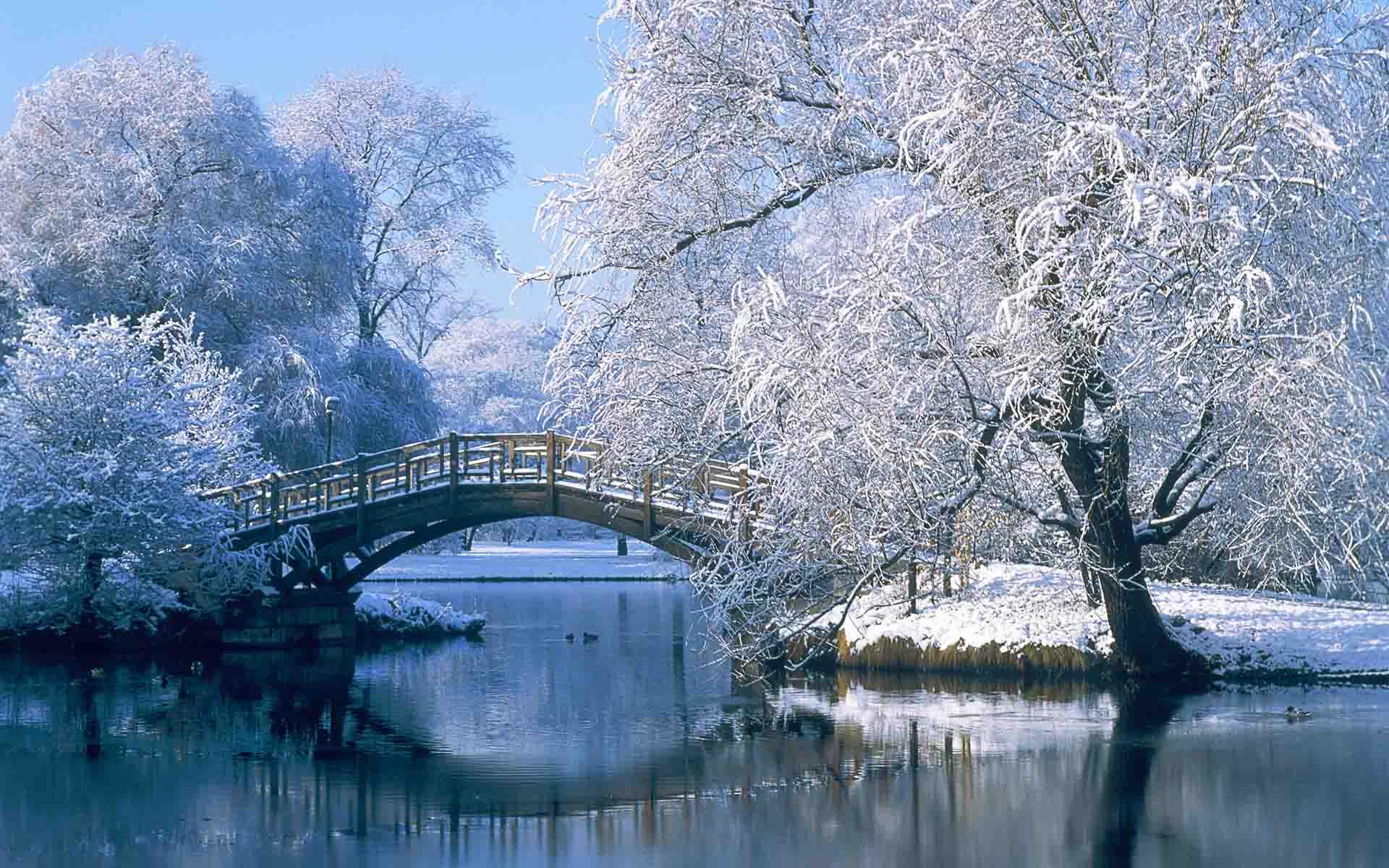 Winter Season Latest HD Wallpapers Free Download | New HD