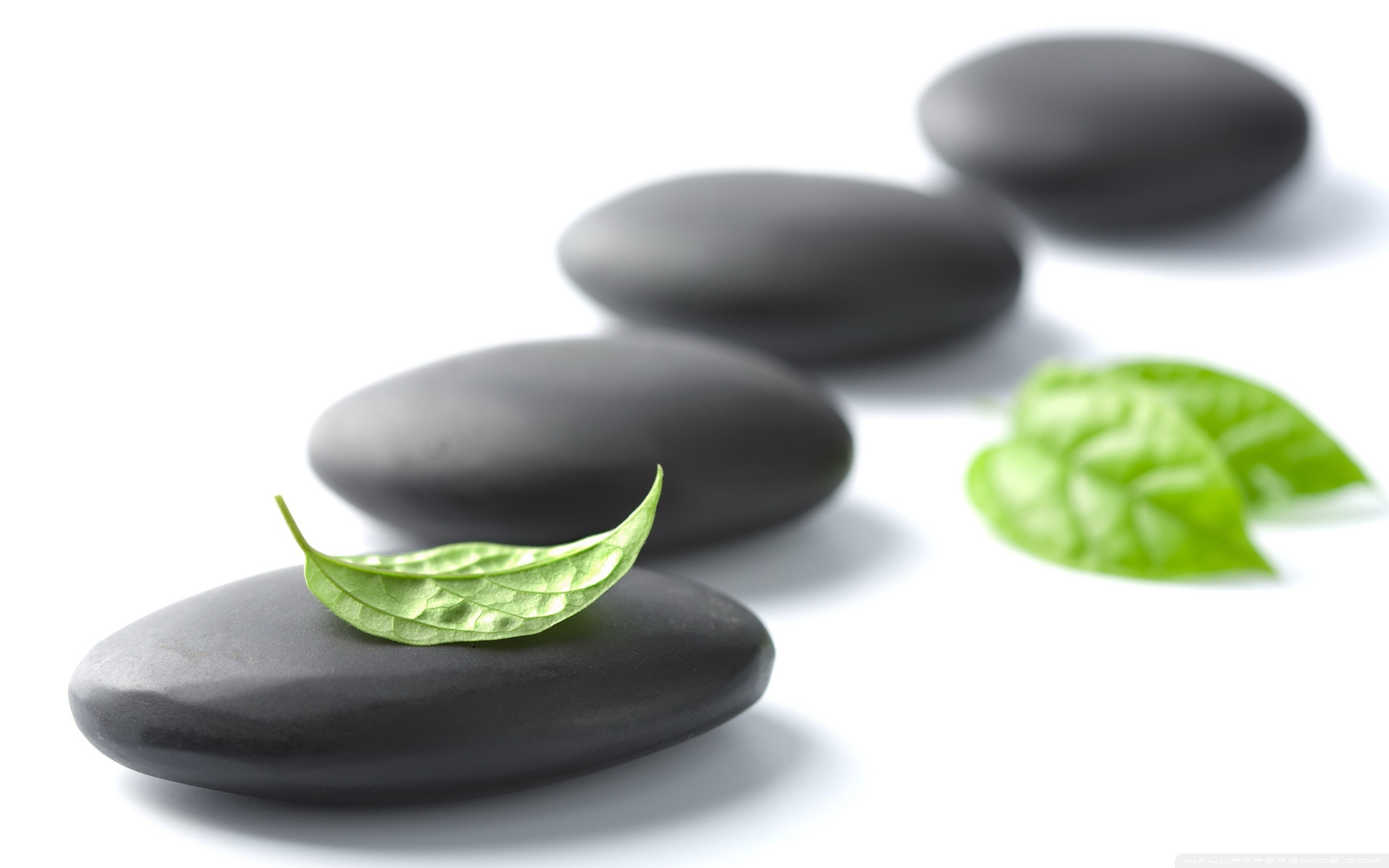 49 Zen Images and Wallpapers for Mac, PC | HBC333 Gallery