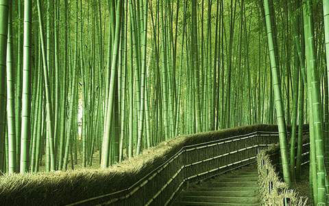 28 Zen Wallpapers to Give Your Desktop a New Lease of Life | The