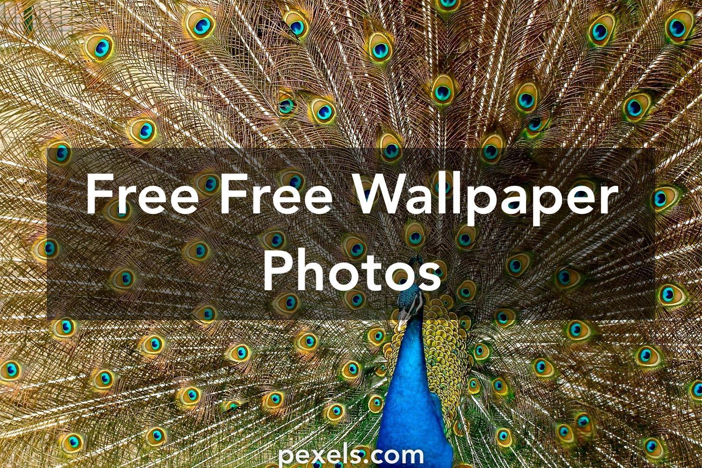 Free Wallpaper · Pexels · Free Stock Photos