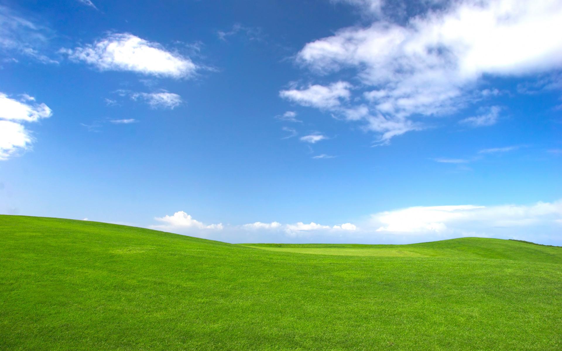 Sky Grass Wallpaper
