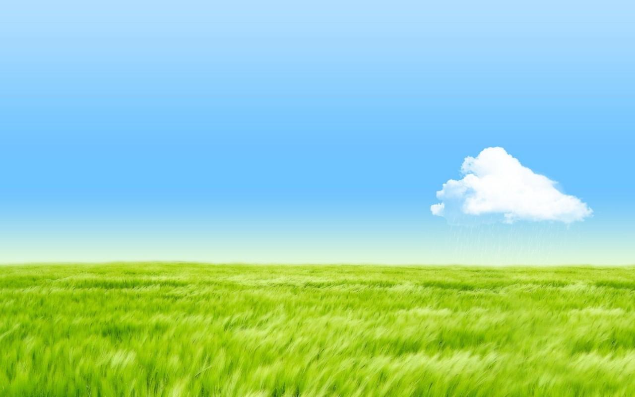 Grass Sky Wallpaper Page 1