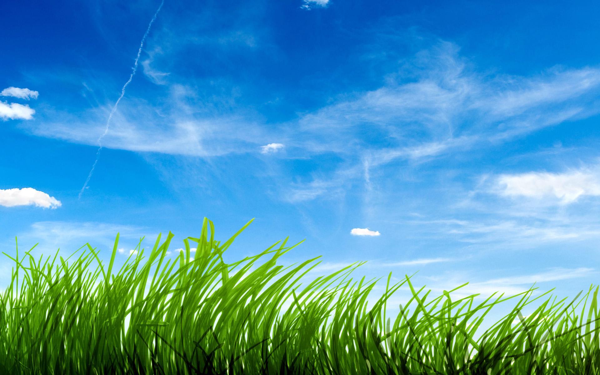Blue Sky Green Grass Wallpapers | HD Wallpapers