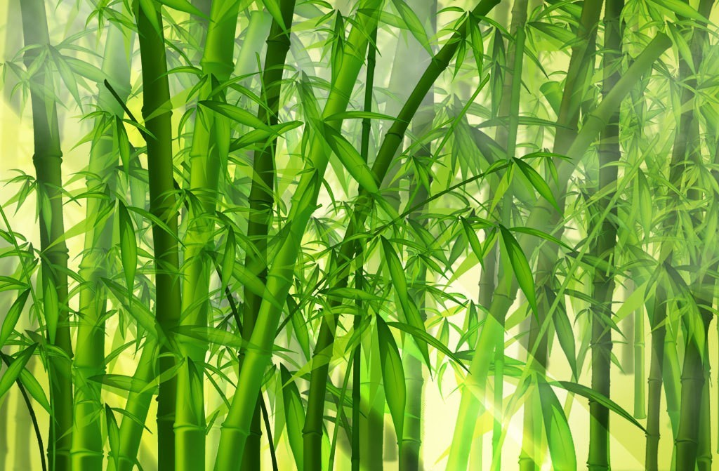 anime wallpaper, bamboo, green, nature, painting, texture