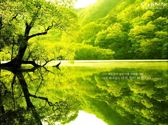 High Resolution Nature Wallpaper Free Download