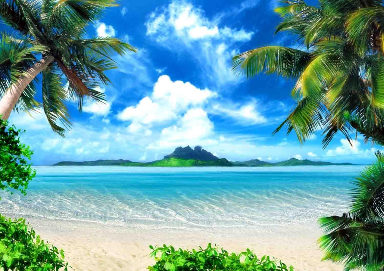 Tropical Island Wallpaper - Android Apps on Google Play