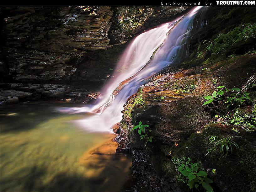 Free Desktop Backgrounds (Hi-res Nature Photography)