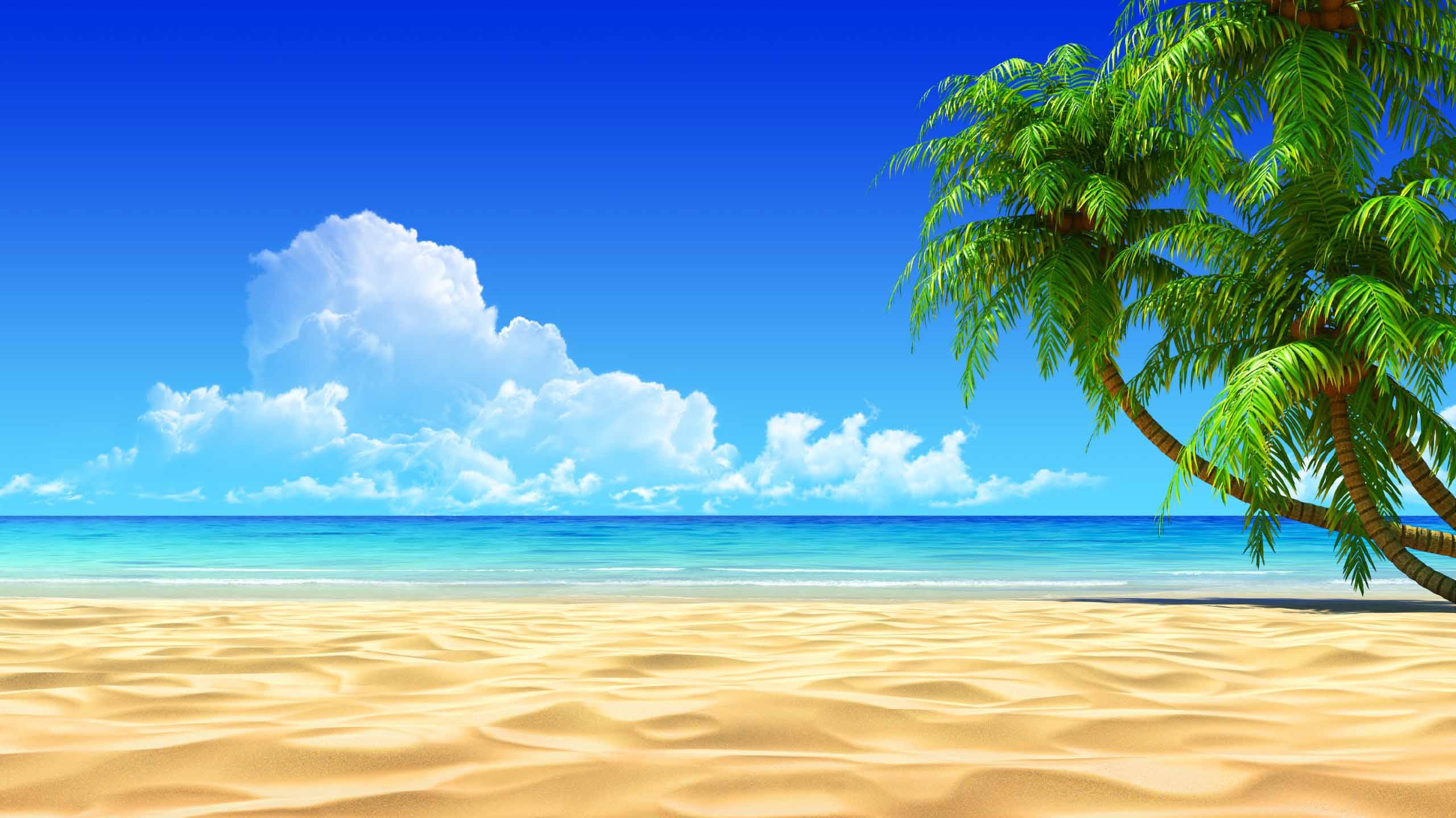 Good Energy Reading for the Beach? |