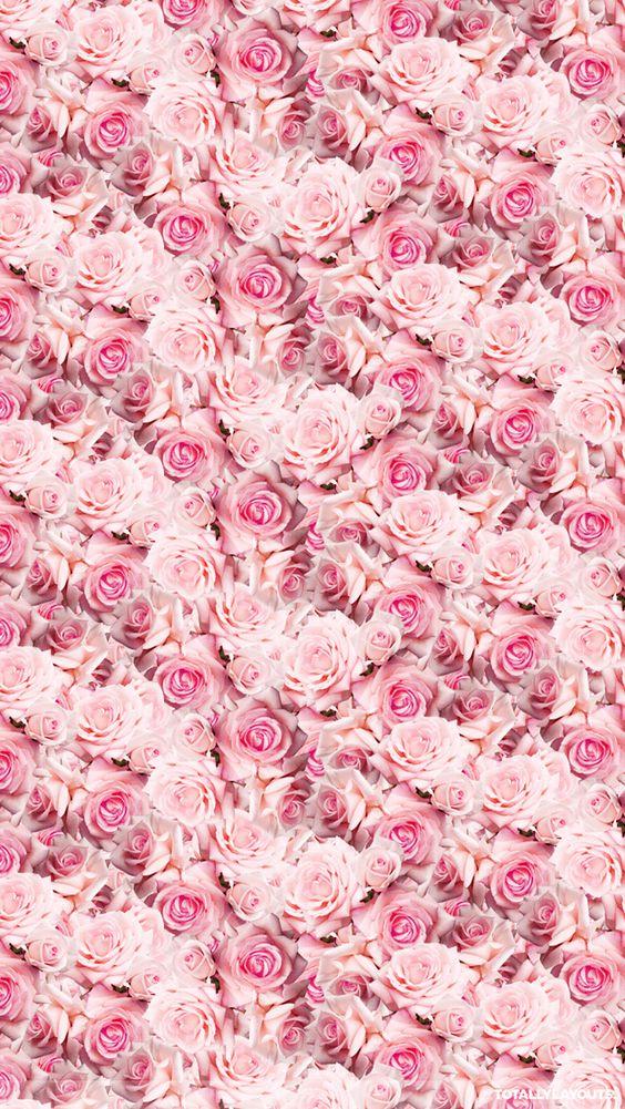 Pink Iphone Wallpaper Tumblr   Pink Wallpapers   Pinterest   Pink