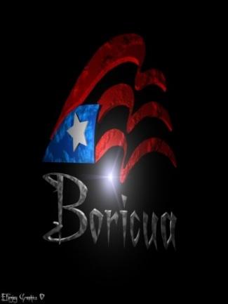 puerto rican flag   CrackBerry com