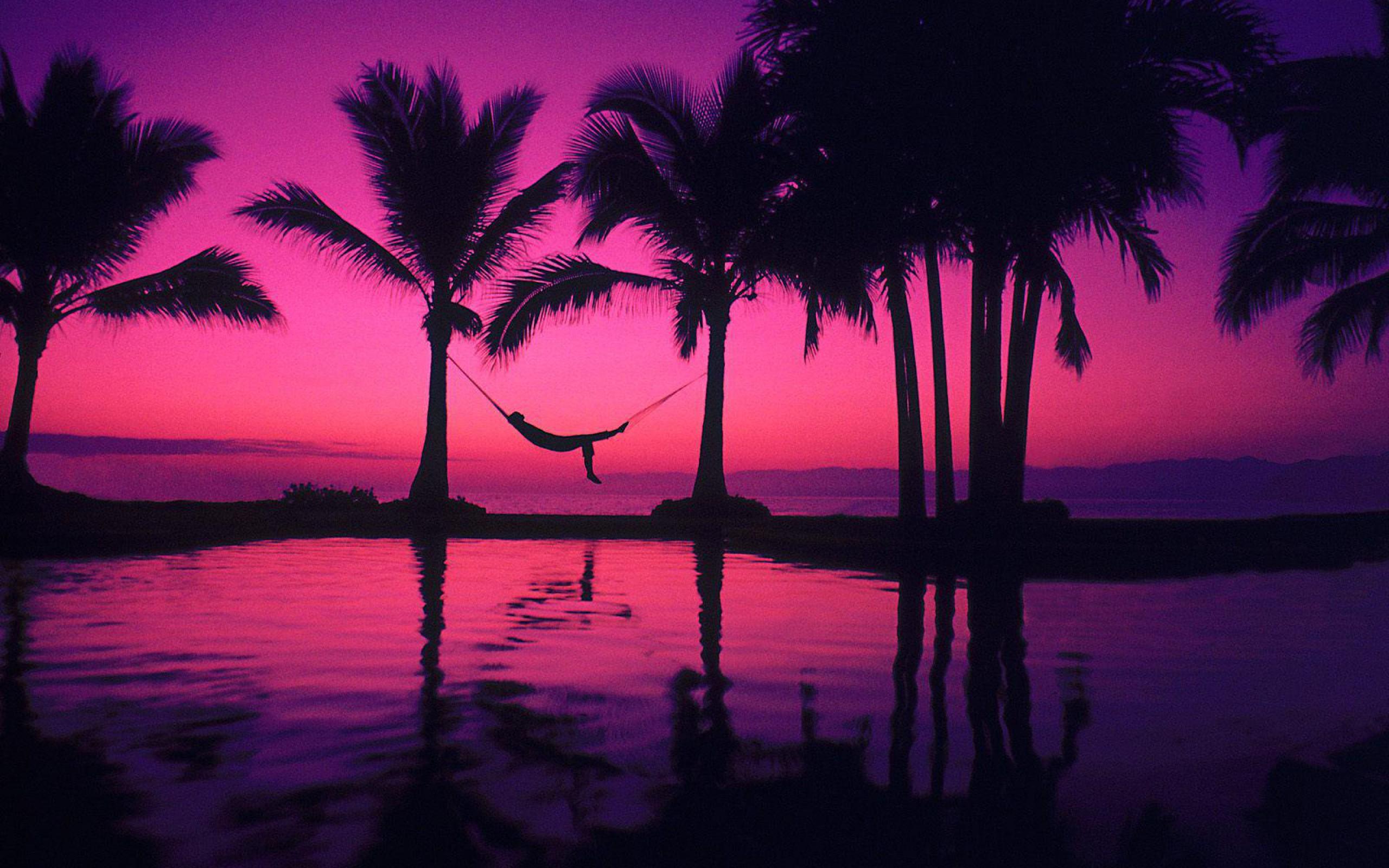 Beach Purple Sunset wallpaper | 2560x1600 | #29186