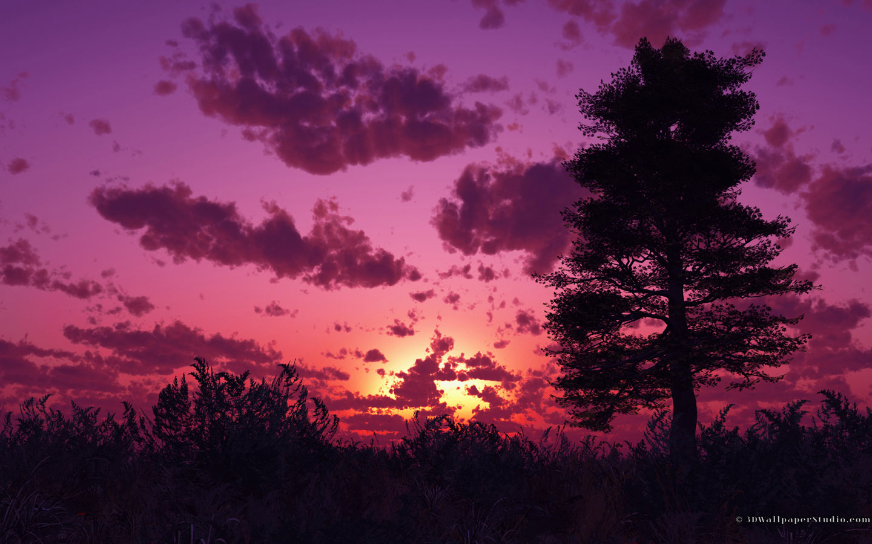 Purple Sunset Desktop Wallpaper - WallpaperSafari