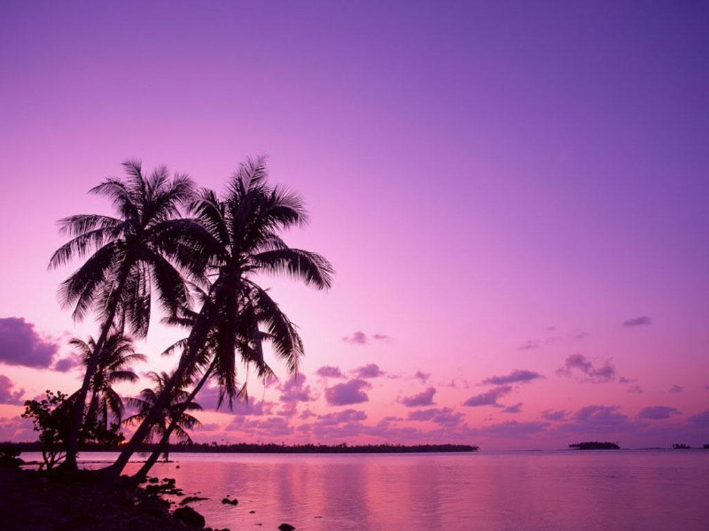 Purple Sunset Wallpapers - Wallpaper Cave