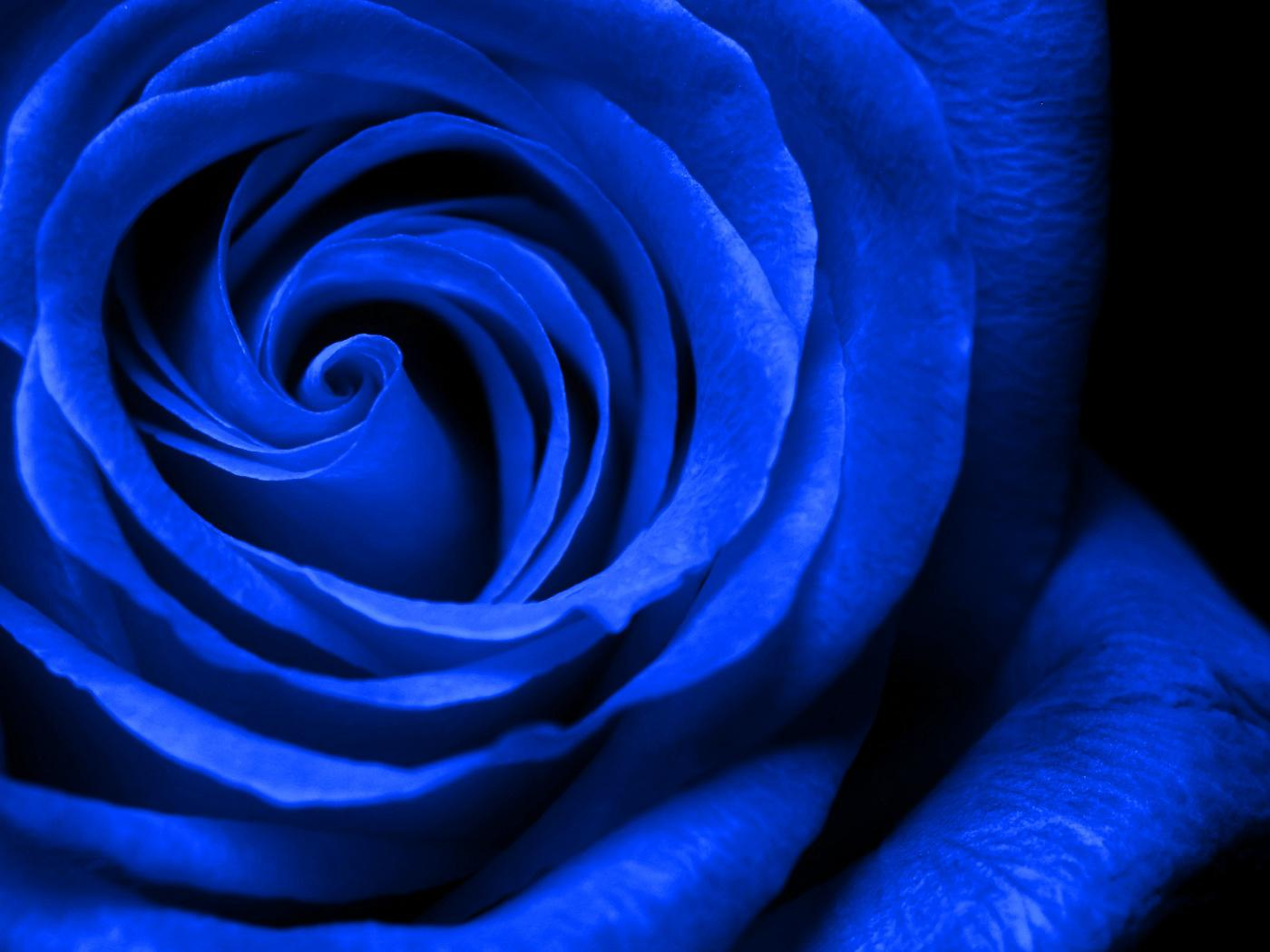 Royal Blue Wallpapers Group (54+)