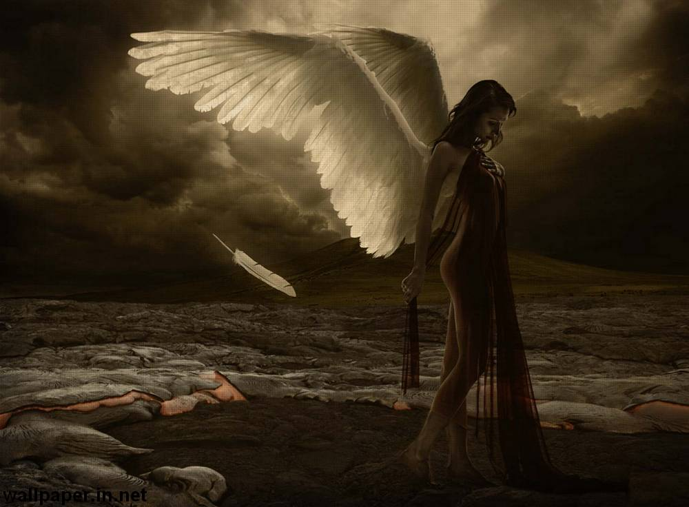 фото раненого ангела