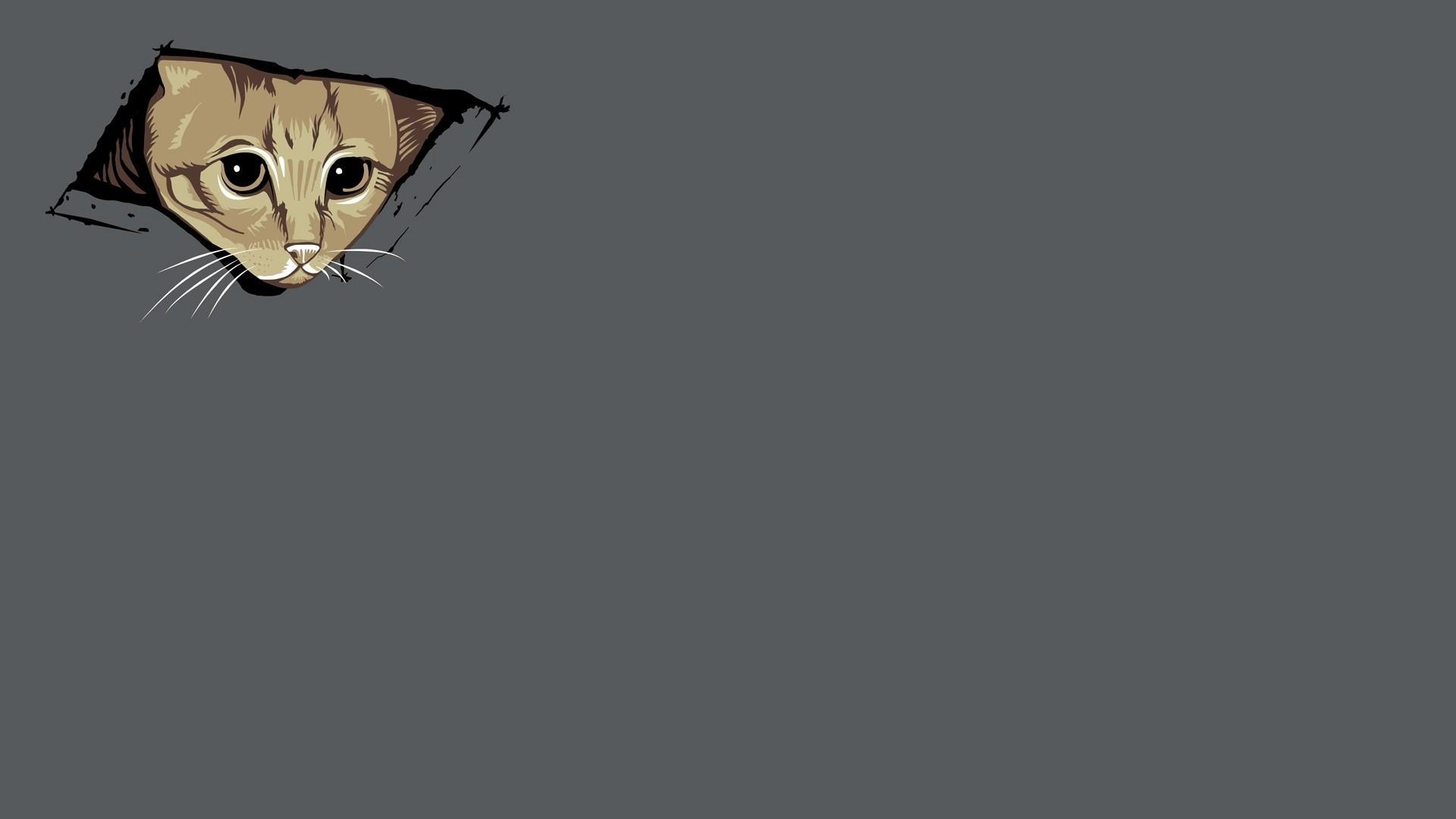Abstract cats kittens simple simplistic wallpaper   AllWallpaper