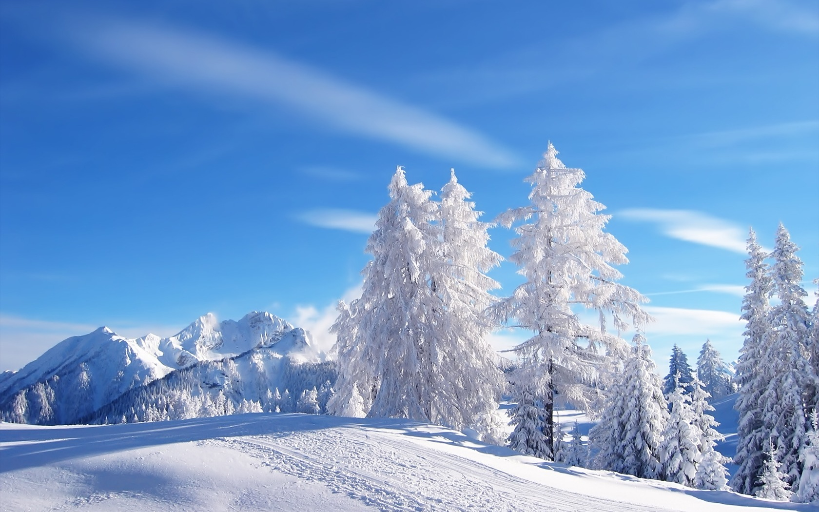 Snow Wallpaper Winter Nature Wallpapers in jpg format for free