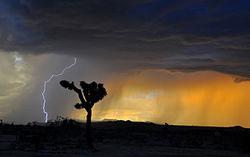 Storm - Wikipedia