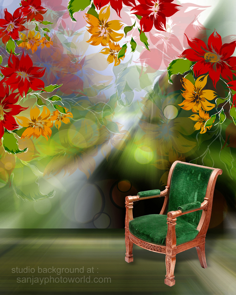 Sanjay Photo World: psd Studio Backgrounds vol  10