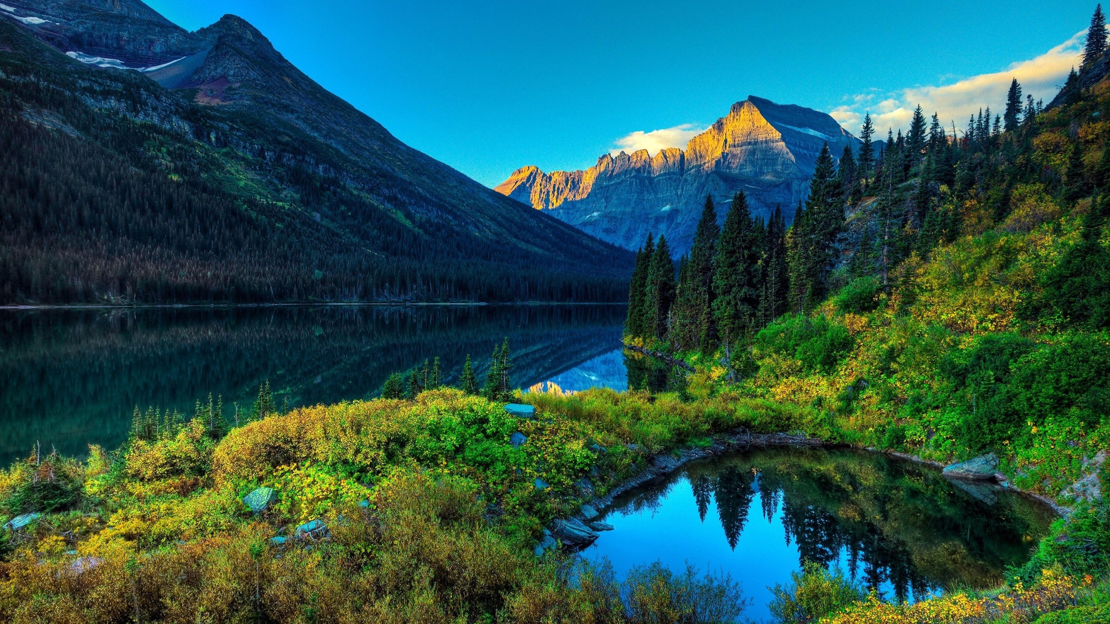 Forest Mountains Ultra HD 4K Wallpaper | Nature | Pinterest
